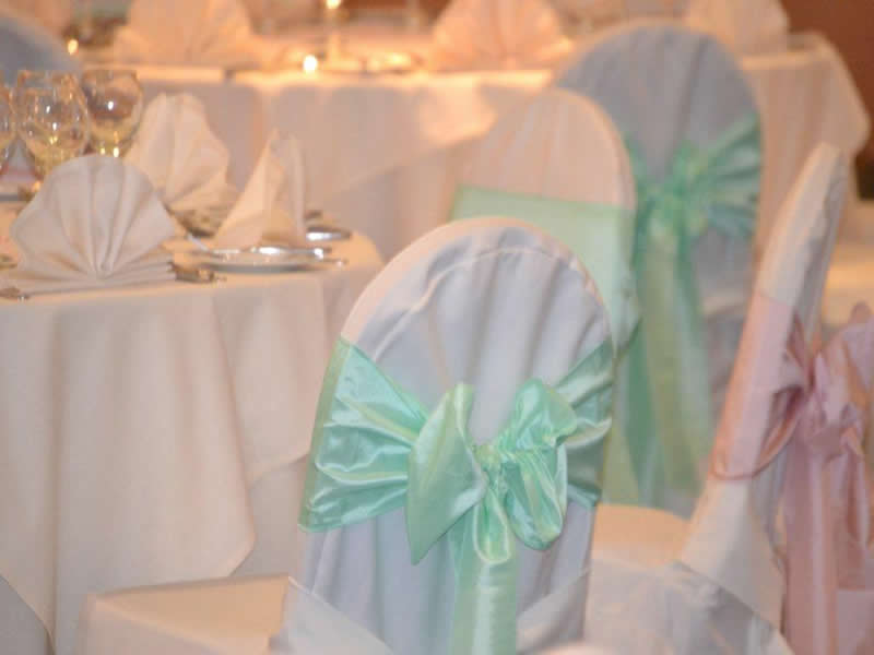 Mint Green and Pink Taffeta