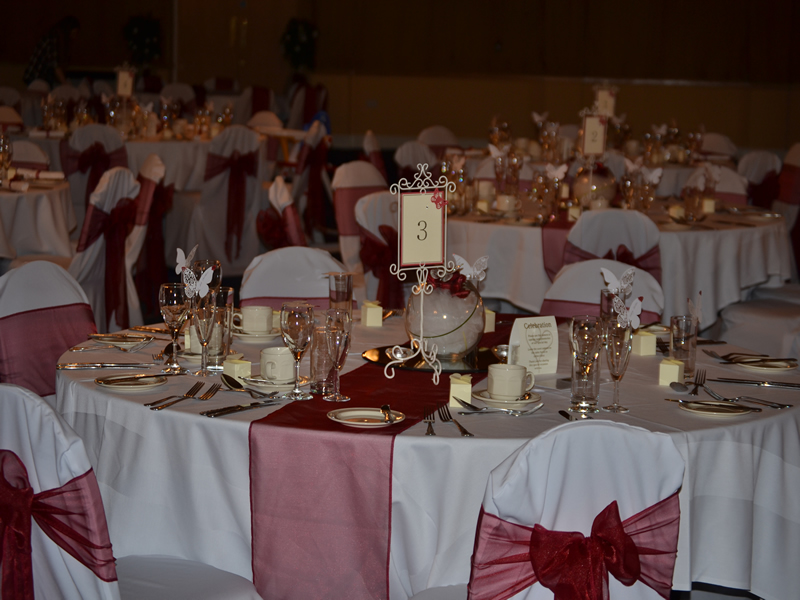 Wine Red Organza